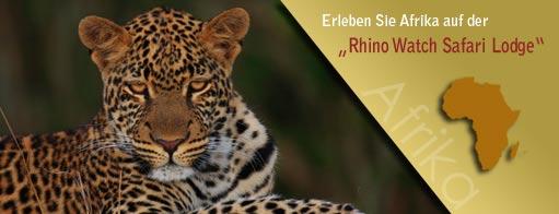 Banner für Arfika-tansania