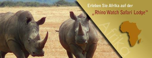 Banner für Arfika-kenia